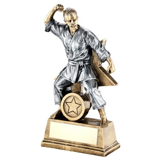 Picture of Brz/gold/pew Female Martial Arts Figure With Star Backing Trophy (1in Cen) - 9in (229mm)
