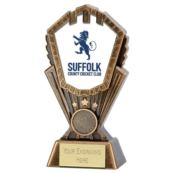 Picture of Personalised Cosmos Cricket Award (8 Inch (20cm))
