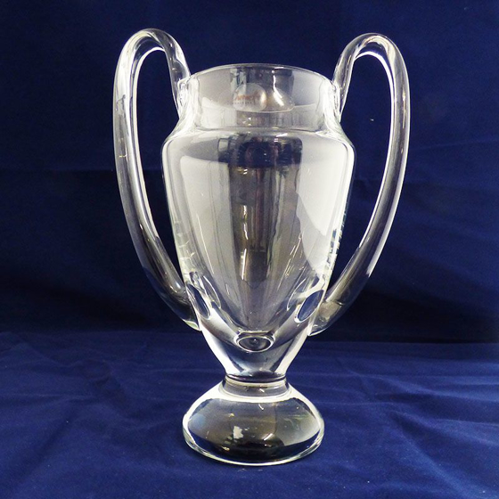 Picture of Traditional Glass Trophy with Handles. 235mm