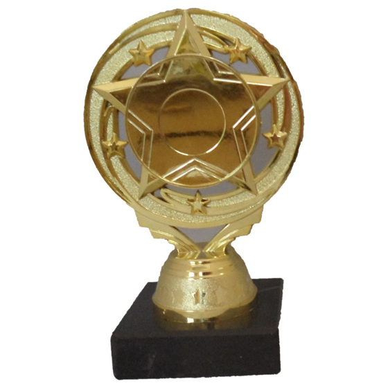 Picture of Circle Star Award 145mm
