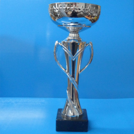 Picture of Tall Slim Silver Cup  290mm