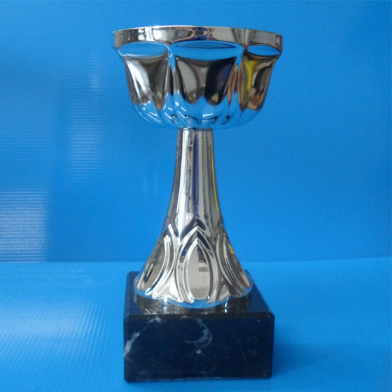 Picture of Recognition Cup 195mm